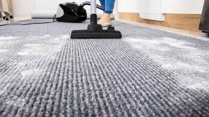 Schedule Carpet Cleaning Ann Arbor